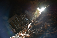 Solen skiner in genom en stollöppning till en Bergslagsgruva