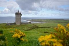 Irländsk natur