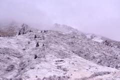 Upp bland bergen