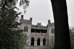 Slottet bakom trädet