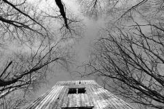 Den gamla trälaven