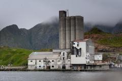 Fiskindustri
